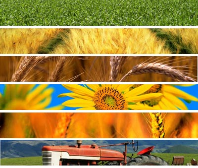 Teramo, 28^ edizione della Fiera dell'Agricoltura