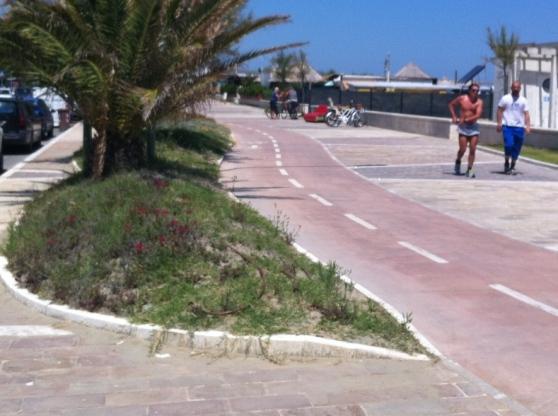 Pescara: aiuole secche, appello ai balneatori