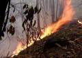 Nuovo incendio a Montesilvano: fiamme vicino case