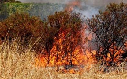 Incendio a Chieti scalo, fiamme alte vicino case