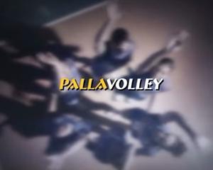 pallavolley