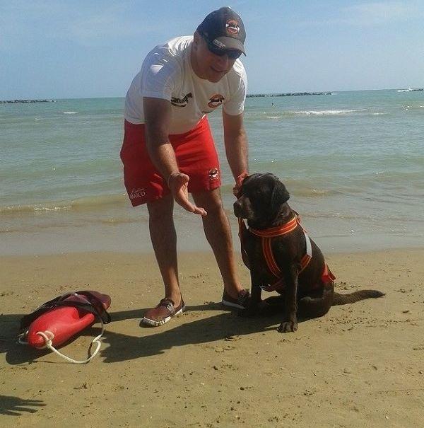 Cani della Sics in spiaggia