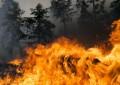 Caramanico: incendio spento dopo sette ore