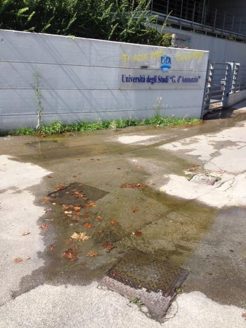 Pescara, perdita d'acqua in viale Pindaro