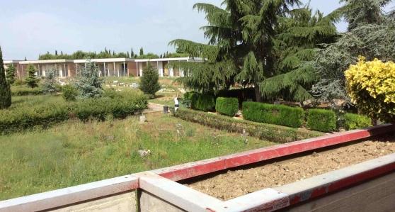 Prostituzione al cimitero di Giulianova