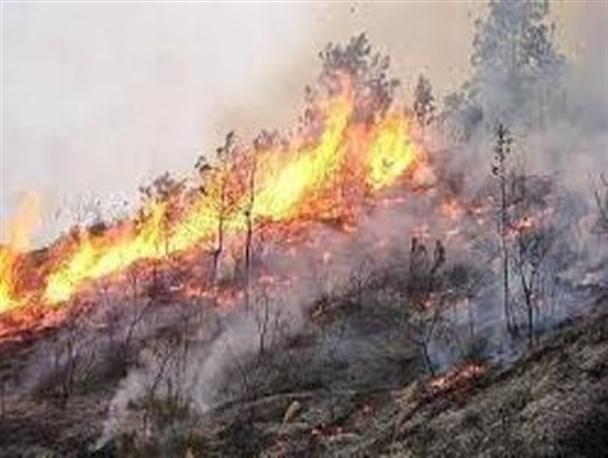 Altro incendio a Torre de' Passeri, in azione Canadair