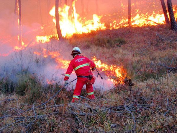 Incendio a Feudo Basso di Castellalto, domato all'alba