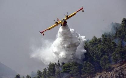 Incendi: a fuoco due boschi nella Marsica