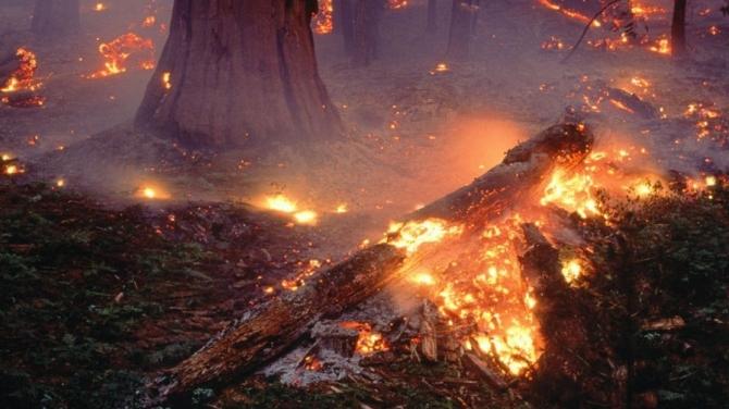 Alanno: incendio nella notte