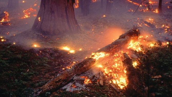 Incendio a Liscia, due canadair nell'inferno del vastese