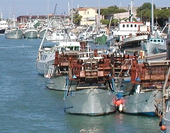 Fermo biologico: stop a pesca dopo ferragosto