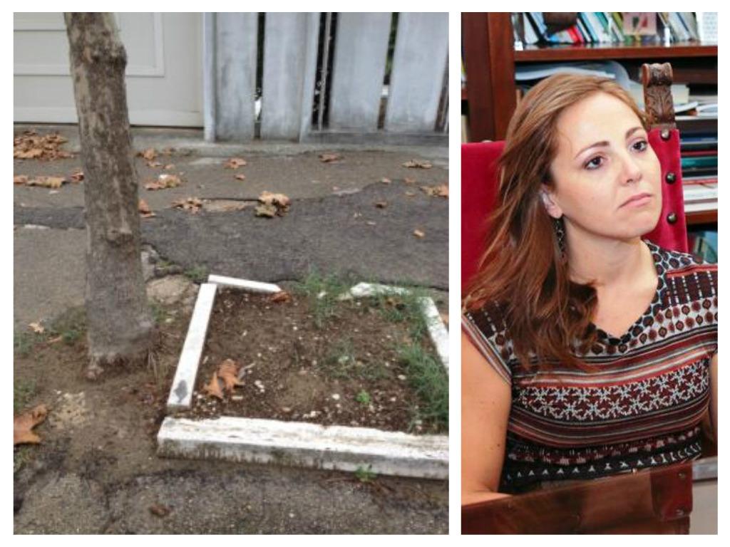 Pescara: sarà sistemato albero fuori aiuola