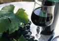 Vini: da Tollo a Toronto per promuovere la qualità abruzzese