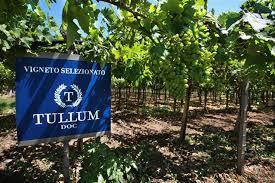 Ancora premi per i vini di Feudo Antico