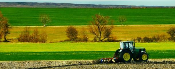 Agricoltura Abruzzo: Regione sostiene le colture