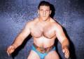 Pizzoferrato: 80 anni del Wrestler Bruno Sammartino