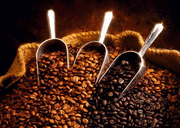 Vasto: denunciati due ladri di… caffè