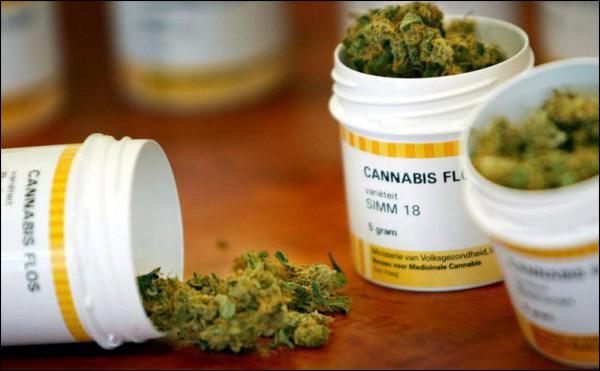 Abruzzo, legge su cannabis terapeutica è inapplicata