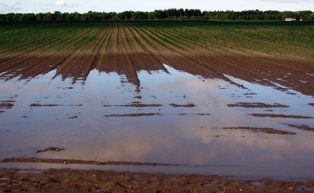 Alluvione Marsica: Coldiretti, danneggiate anche strutture