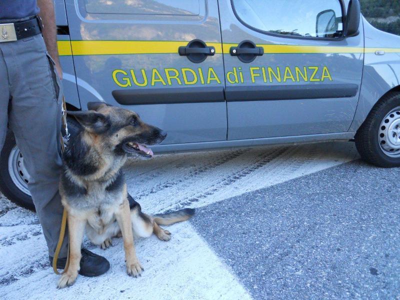 Droga: corriere smascherato da un cane