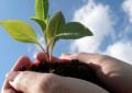 Agricoltura Abruzzo: 13 milioni per il pacchetto giovani