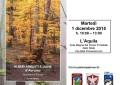 Alberi, arbusti e liane d'Abruzzo