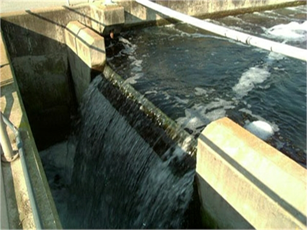 Abruzzo, i depuratori fanno acqua…sporca.