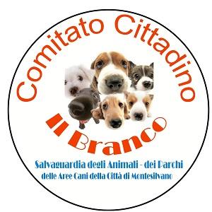comitato-ilbranco11