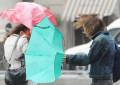 Maltempo: allerta meteo in Abruzzo domani e dopodomani
