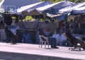 Pescara: tra mercato etnico e revoca delle licenze