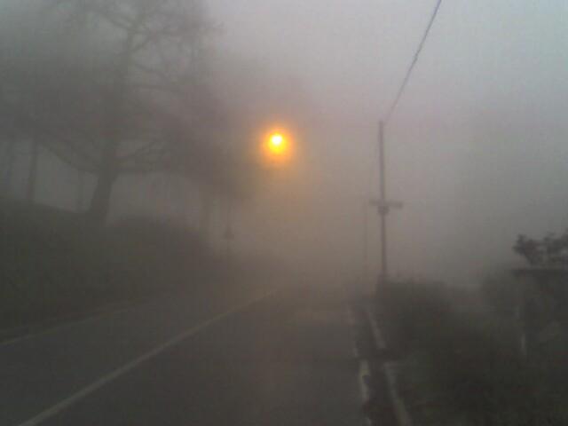 nebbia-sole1