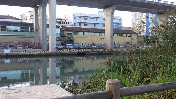 Pescara, parziale riapertura della golena nord