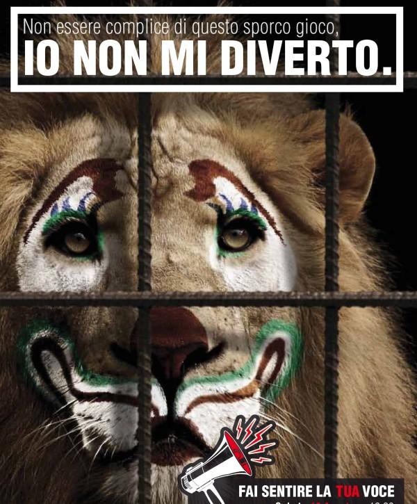 Circo con animali? Pescara dice no grazie