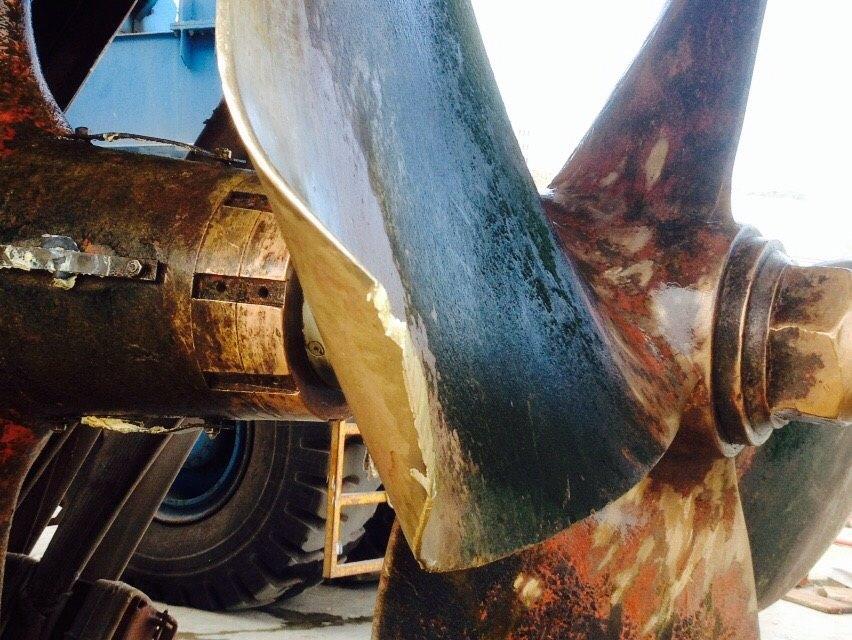 Pescara: tronchi nel fiume rompono eliche barche