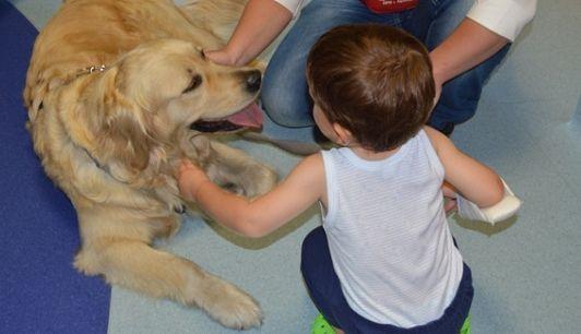 L'Aquila: pet therapy pediatrica al San Salvatore