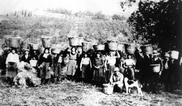 Giuliano Teatino: Una giornata per gli agricoltori