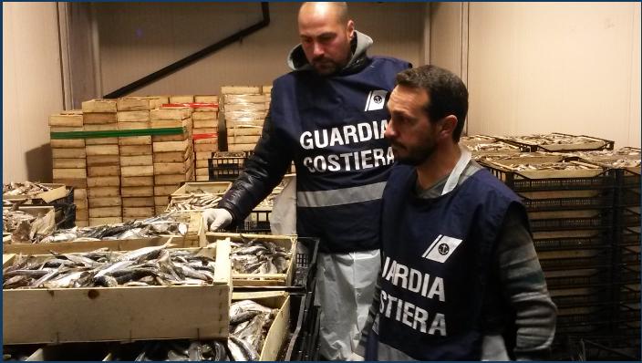 Pesce Sicuro: 10 tonnellate di sequestri tra Abruzzo e Molise