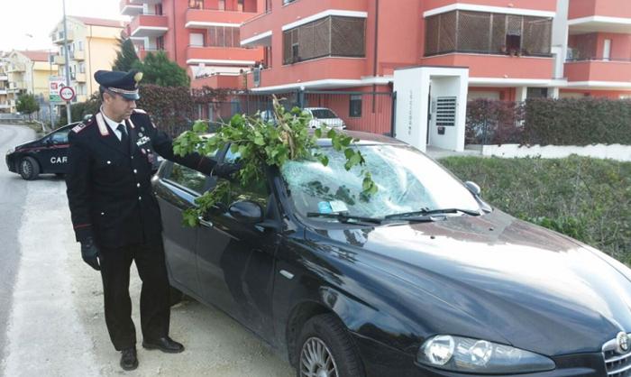 Spoltore: albero su auto, Carabinieri aiutano giovane