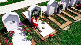 cimitero-animali1