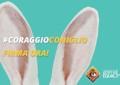 """Pescara: la Lav in piazza con """"Coraggio coniglio"""""""