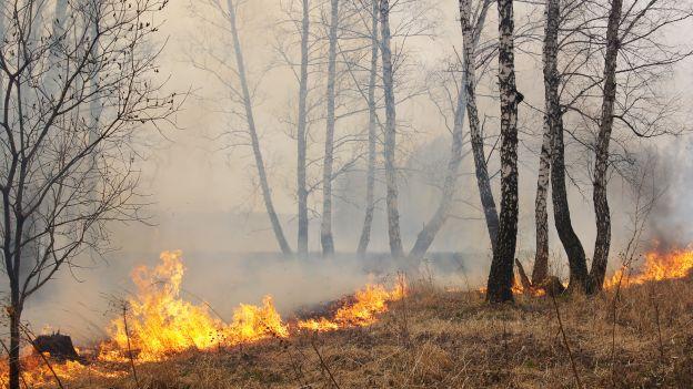 Bolognano: domato l'incendio, salvo il Parco