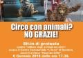 Circo con animali, la Lav protesta a Spoltore