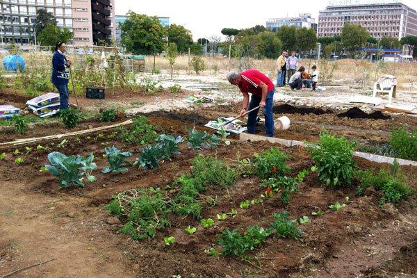Montesilvano: orti urbani in via Don