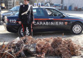 Furto di rame a Colonnella: Due arresti in flagrante