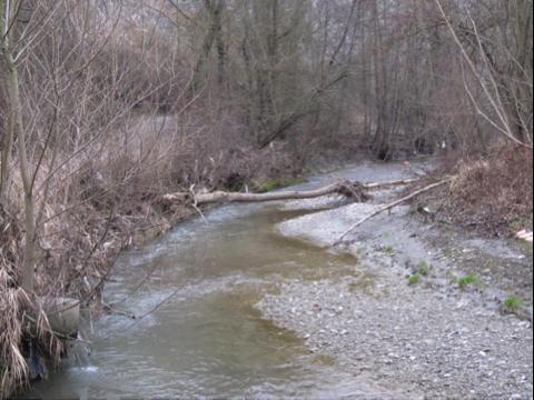 Scafa, ridefinite le sponde del torrente Lavino