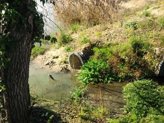Commissione Ambiente su inquinamento fiume e balneazione