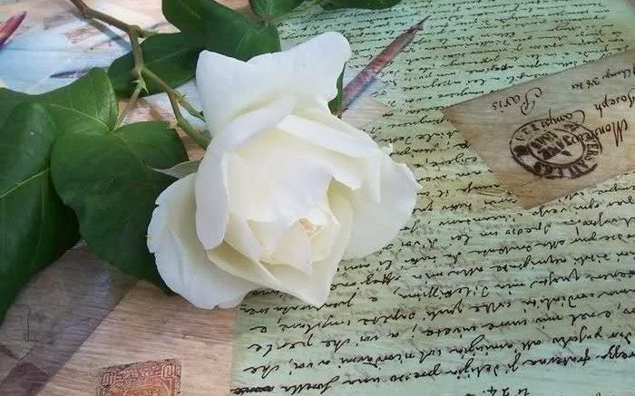 lettera-d-amore