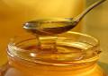 Castel San Pietro: E' abruzzese il miele più buono d'Italia