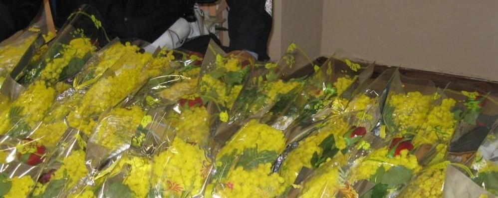 Chieti: Confcommercio contro vendita abusiva mimose