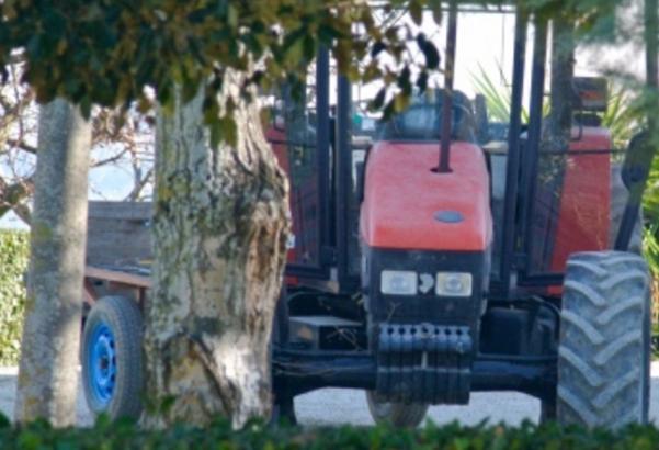 Tragedia a Canzano: Bimbo cade dalle braccia del nonno e muore